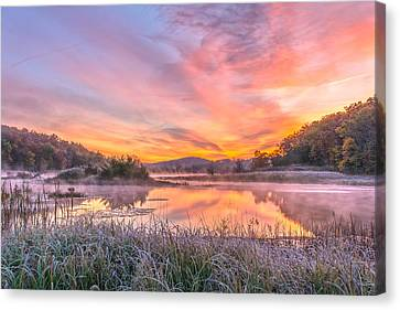Frosted Dawn At The Wetlands Canvas Print