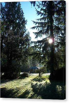 Frosted Gazebo Canvas Print by Ken Day