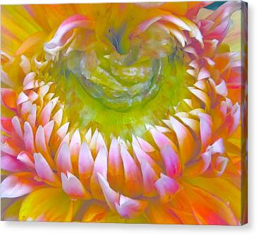 Frosted Canvas Print by Gwyn Newcombe