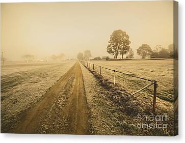 Frosted Road In Outback Australia Canvas Print