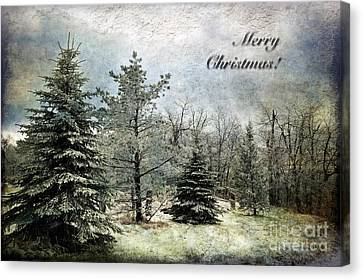 Frosty Christmas Card Canvas Print by Lois Bryan