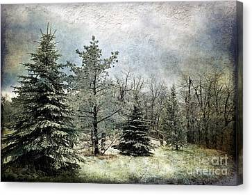 Frosty Canvas Print by Lois Bryan