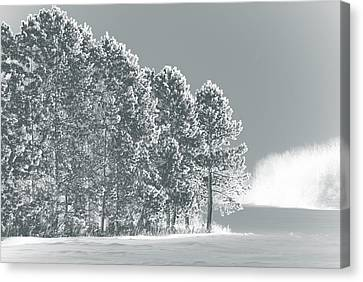 Canvas Print featuring the photograph Frosty Morning by WB Johnston