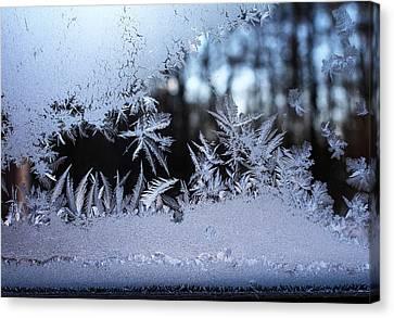 Frosty Morning Window Canvas Print by Liz Allyn