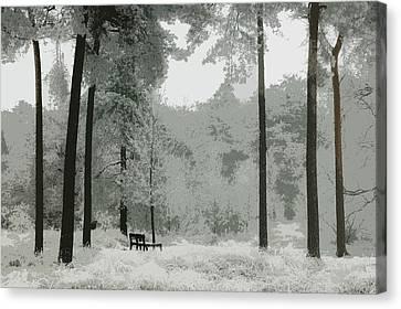 Frosty Paradise Canvas Print