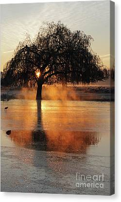 Frosty Sunrise In Bushy Park London 2 Canvas Print