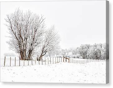 Frosty Winter Scene Canvas Print