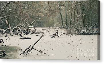 Muted Canvas Print - Frozen Fallen Wide by Andy Smy