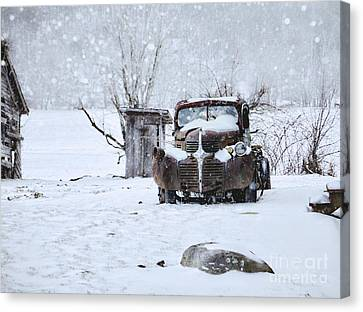 Frozen In Time Canvas Print by Benanne Stiens
