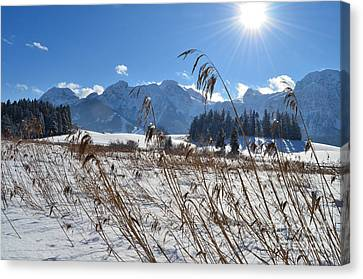 Frozen Lake And Mountains 2 Canvas Print by Sabine Jacobs