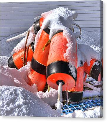 Frozen Lobster Trap Buoys In Winter Canvas Print by Olivier Le Queinec
