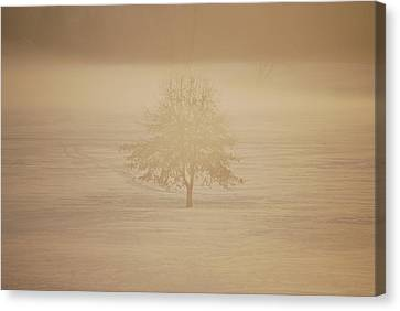 Frozen Natural Sepia Horizontal Canvas Print by Peter  McIntosh