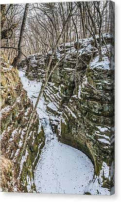 Frozen Pewits Nest From Above Canvas Print by Randy Scherkenbach