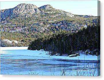 Frozen Pond Canvas Print by Barbara Griffin