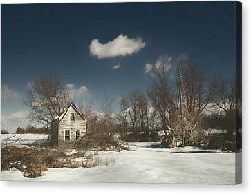 Frozen Stillness Canvas Print