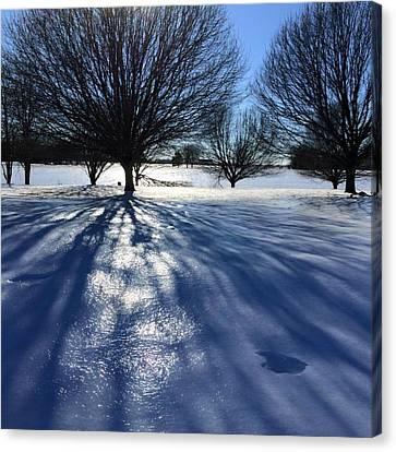 Frozen Sun Canvas Print by Raven Moon