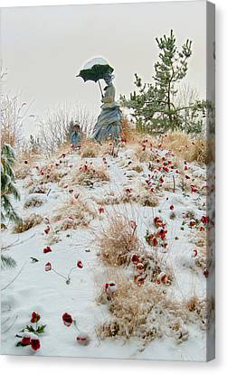 Frozen Viewpoint Canvas Print by Timothy Hedges