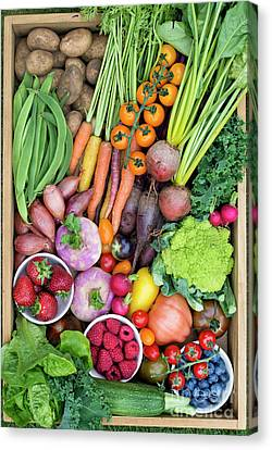 Fruit And Veg Canvas Print by Tim Gainey