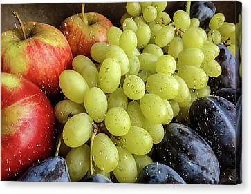 Still Life Of Fruit Assortment Canvas Print by Ivanoel Art