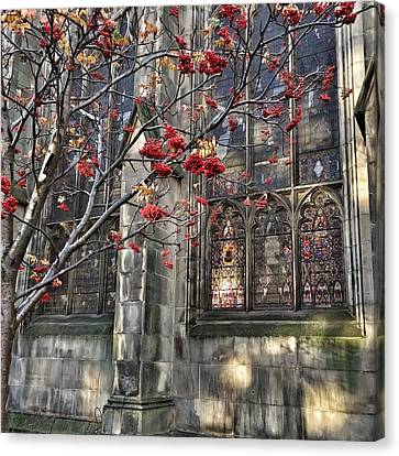 Canvas Print featuring the photograph Fruit By The Church by RKAB Works