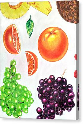 Concord Grapes Canvas Print - Fruit Illustrations - Markers And Pencil by Miriam Danar