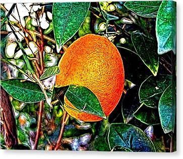 Canvas Print featuring the photograph Fruit - The Orange by Glenn McCarthy Art