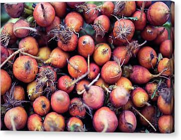 Fruits And Vegetable At Farmer Market Canvas Print