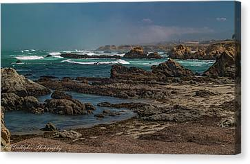 Canvas Print - Ft Bragg Coast by Bill Gallagher