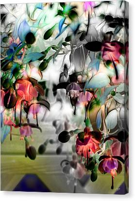 Fuchsia Abstract Canvas Print by Stuart Turnbull