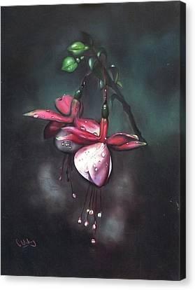 Fuchsia And Dew  Canvas Print