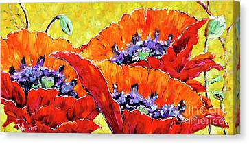 Full Bloom Poppies By Prankearts Fine Art Canvas Print by Richard T Pranke