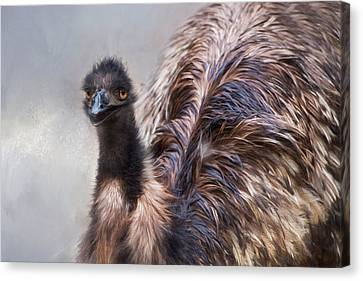 Canvas Print featuring the photograph Full Feather by Robin-Lee Vieira