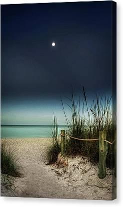 Full Moon Beach Canvas Print by Greg Mimbs