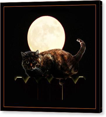 Full Moon Cat Canvas Print by Gravityx9 Designs