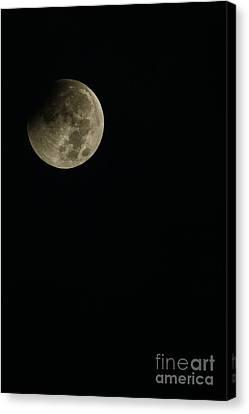 Full Moon Eclipse Canvas Print by Thomas R Fletcher