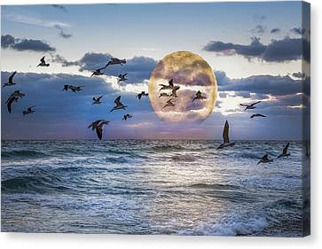 Full Moon Moment Canvas Print by Debra and Dave Vanderlaan