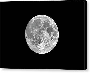 Full Moon Canvas Print by Richard Newstead