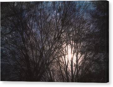 Full Moon Rising Canvas Print by Scott Norris