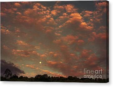Full Moon Setting At Sunrise Canvas Print by Thomas R Fletcher