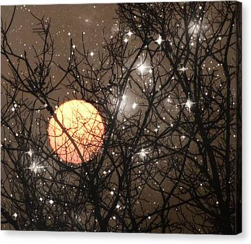 Full Moon Starry Night Canvas Print