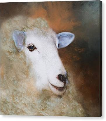 Canvas Print featuring the photograph Fully Woolly by Robin-Lee Vieira