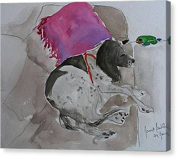 Fulmi And Pink Pillow Canvas Print by Janet Butler