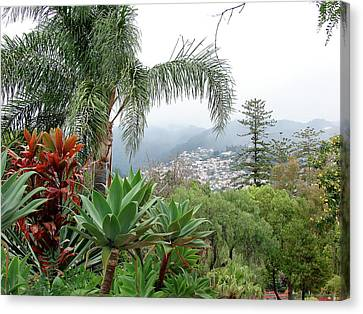 Funchal Maderia Canvas Print