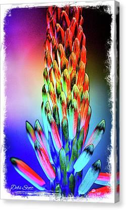 Funky Aloe Canvas Print