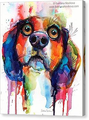 Portraits Canvas Print - Funny Beagle Watercolor Portrait By by Svetlana Novikova