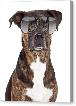 Funny Dog With Cat Reflection In Sunglasses Canvas Print by Susan Schmitz