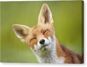 Funny Fox Series _fox Poto Bomb Canvas Print