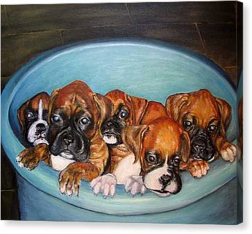 Funny Puppies Orginal Oil Painting Canvas Print by Natalja Picugina