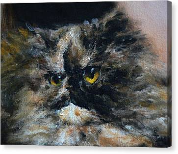 Furry 2 Canvas Print