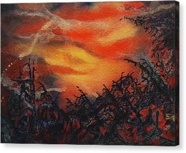 Fury Canvas Print by Shirley McMahon